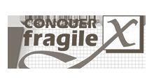 Foundation Conquer X Fragile